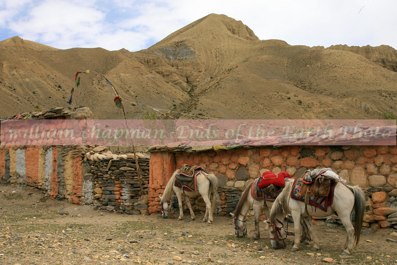 Mani wall north of Tsarang enroute to LoMantang
