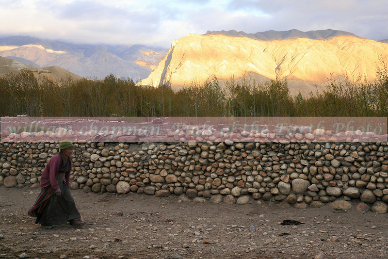 Villager of Tsarang walks home at sunset