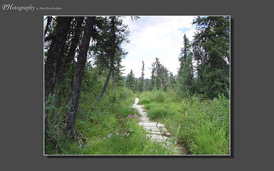 My Alaska 12-08-016
