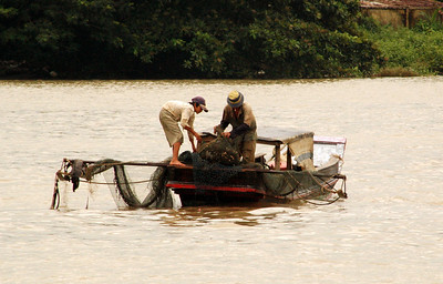 Helping with the nets, Mekong River, Ben Tre