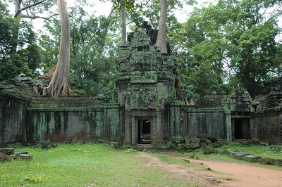 Detail of Ta Phrom temple ruins, Angkor, Cambodia. This was a university built by Khmer king Jayavarman VII.