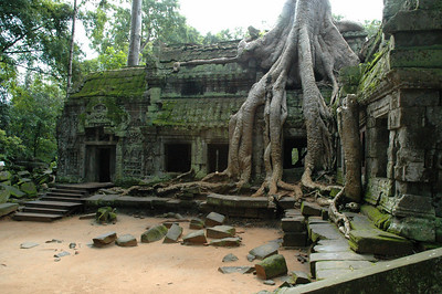 A gallery and invader at the Ta Phrom temple complex, Angkor, Cambodia.