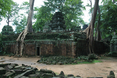 Trees attempting to reclaim the Ta Phrom temple to the jungle, Angkor, Cambodia.