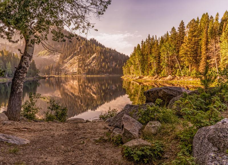 Louie Lake Wildlife