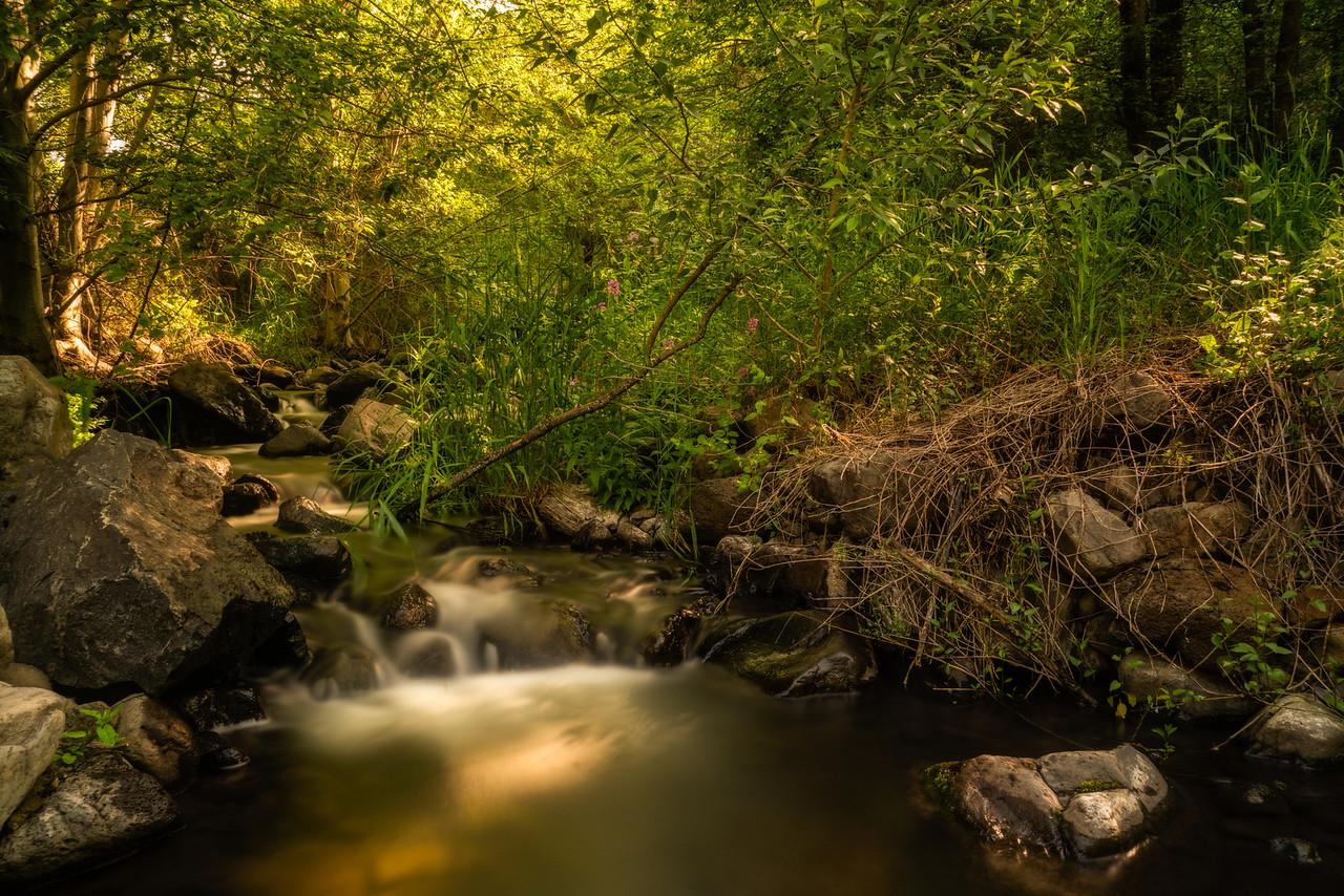 Graves Creek #2