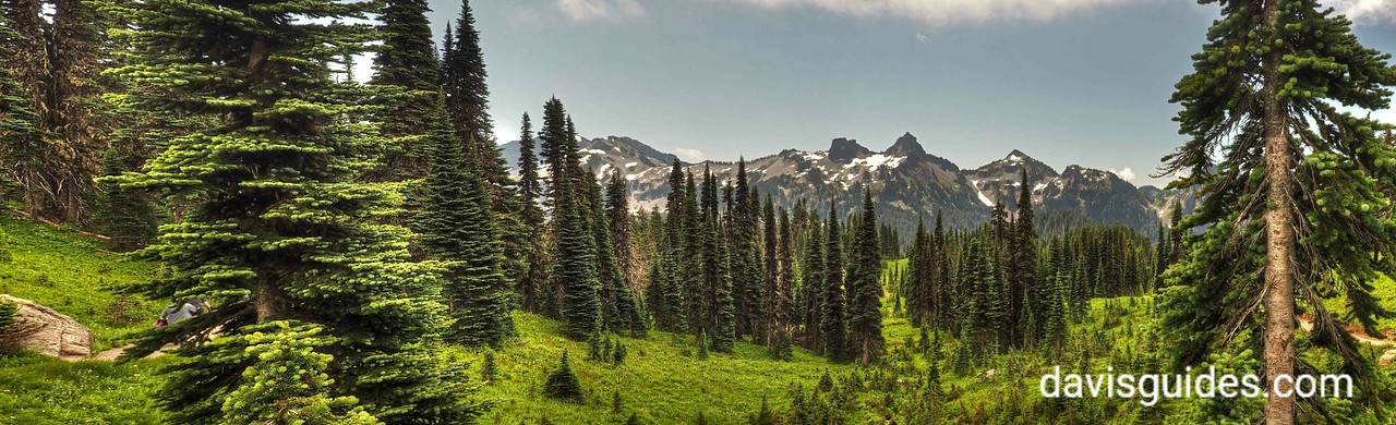 paradise panorama