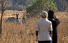 Walking Safari in Zambia at Norman Carr Safari.