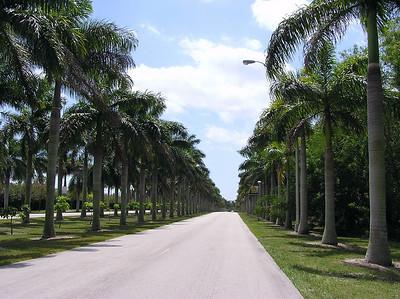 Miami Metrozoo