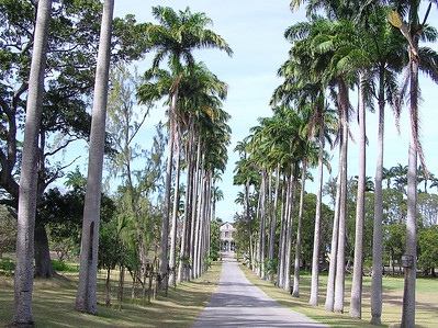 Codrington College, Barbados