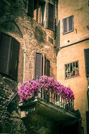 Sienna - Italy