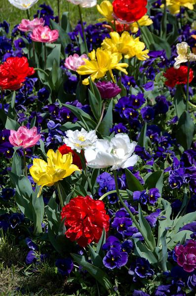 """April 2008 <a href=""""http://adejoie.smugmug.com/gallery/4765591_b5Meo"""">Bucharest, Romania</a>"""