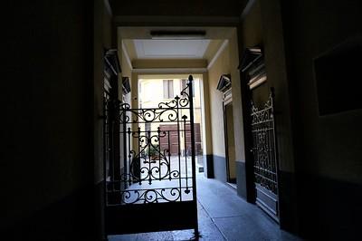 Beautiful interior wrought iron gates