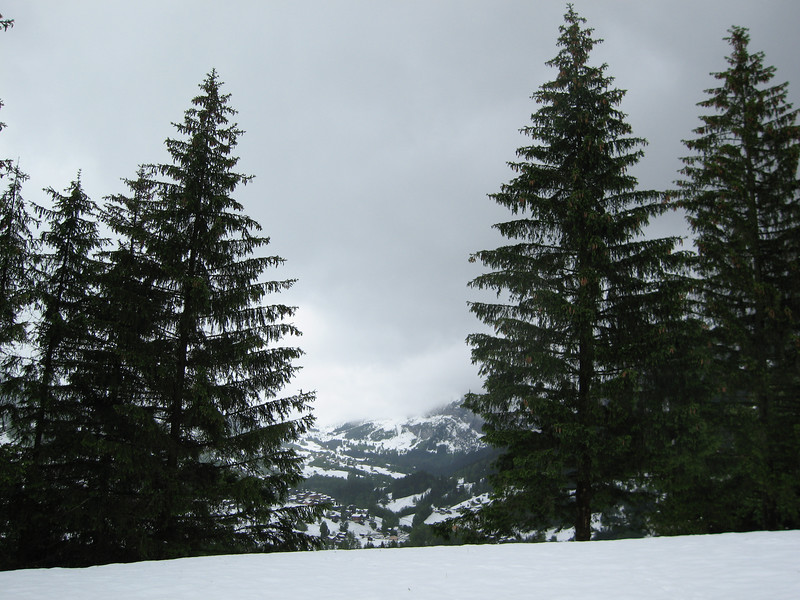 The day after it snowed in Grindelwald i went for a short walk. this is looking towards the campsite from below the Eiger