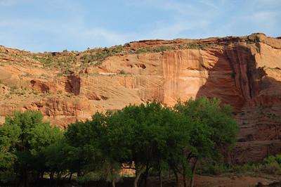 canyon-oasis026