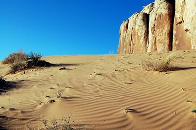 bluff-dunes10