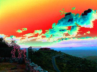 flamingo-sunset-solarized 2 047