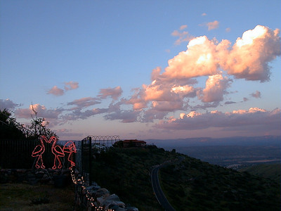 flamingo-sunset 2 047