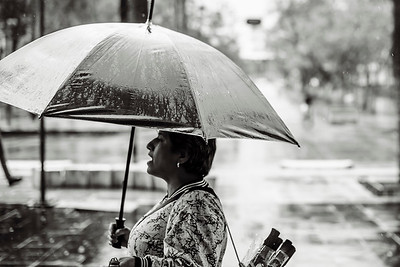 Umbrella seller