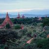 sunset pagoda