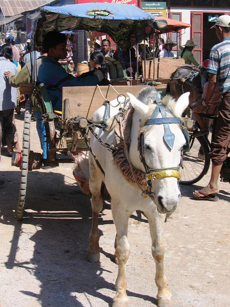 Horse and cart at Market at Aung Ban