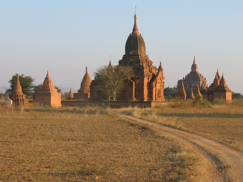 View from Bagan horse cart