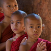 Buddist monk novices
