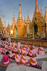 Young Buddhist Nun'a at Shwedagon Paya, Yangon