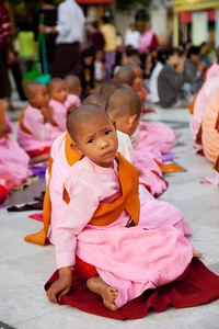 Young Buddhist Nun at Shwedagon Paya in Yangon