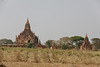 Typical View of Bagan's Surroundings