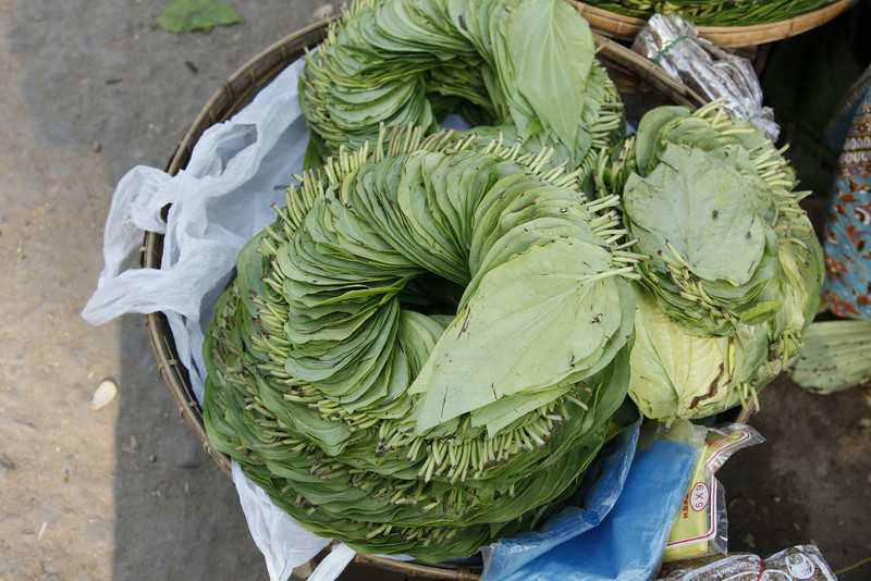 Daily Market-Leaves for Betel Nut Wrappers