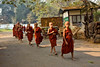 Young Monks On Their Early Morning Alms Rounds