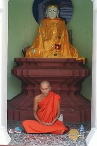 Shwedagon Pagoda Meditating Monk