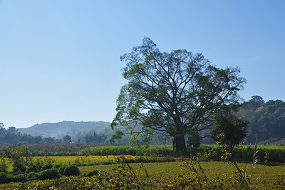 Little town Hsipaw in northern Myanmar