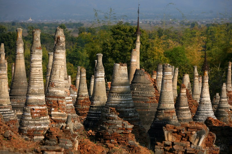 The ruins of stupas poke through the land like alligator teeth.