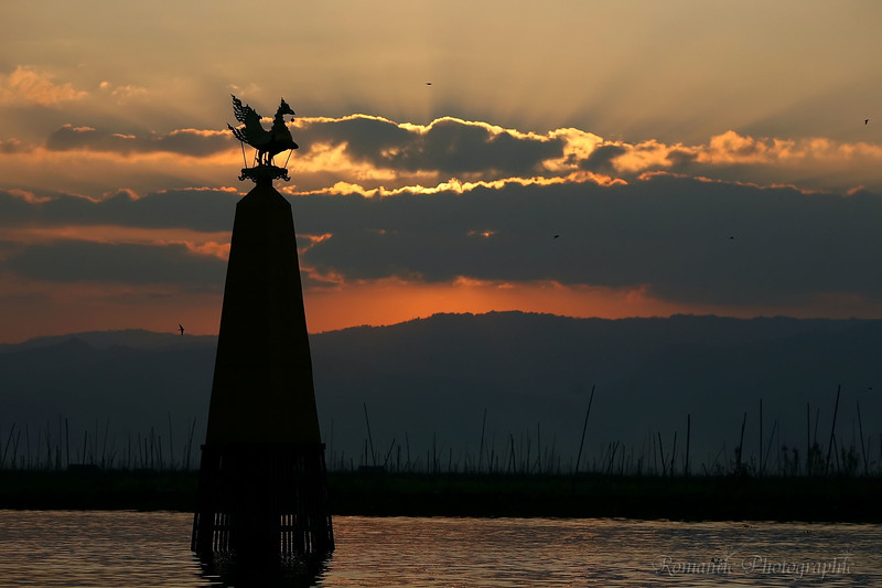 The sun sets behind the golden duck monument.