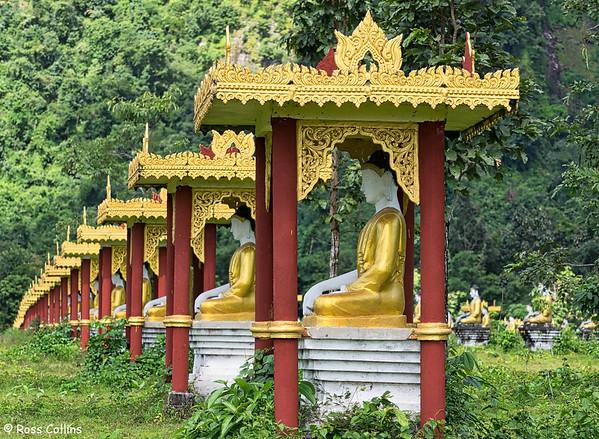 Lonepanyi Garden, Hpa-an, Kayin State, Myamar, 30 September 2015