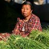Merchant selling bundles of grass.