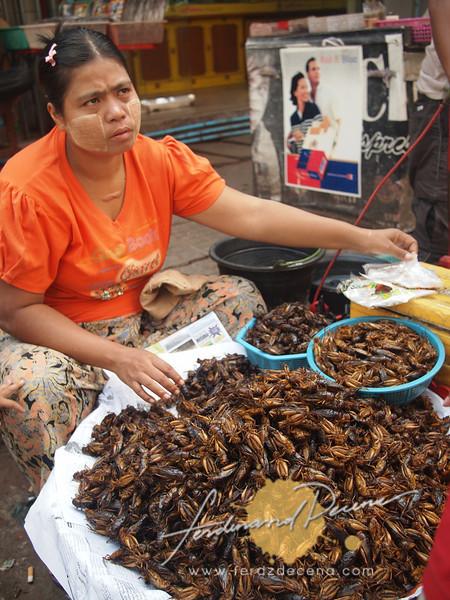 Fried crickets vendor