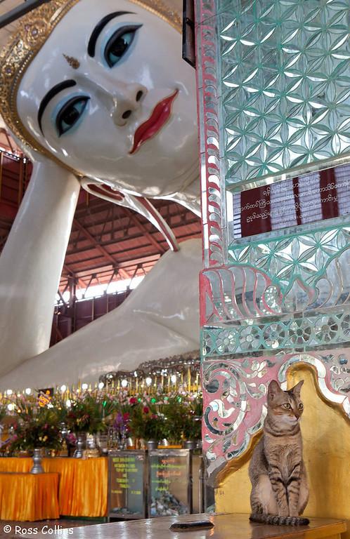Chaukhtatgyi Pagoda, Yangon, Myanmar