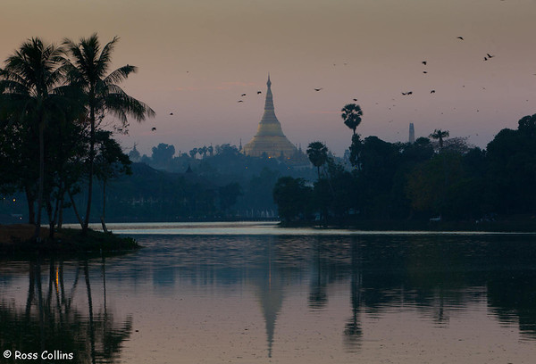 Shwedagon Pagoda, Yangon, Myanmar, 24/25 January 2013
