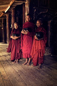 The Novices in the Nat Taung Kyaung Monastery