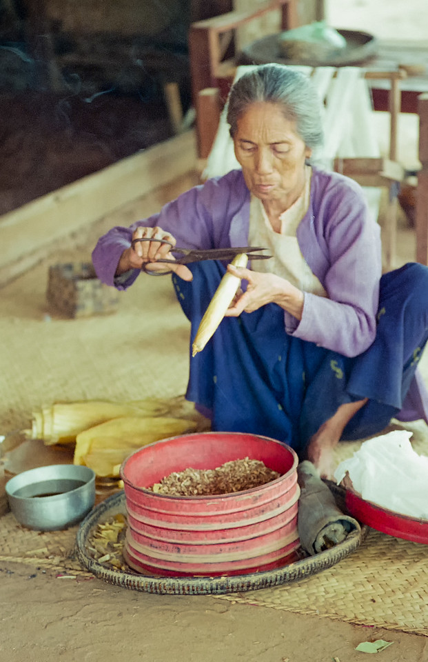 Myanmar Bagan 035