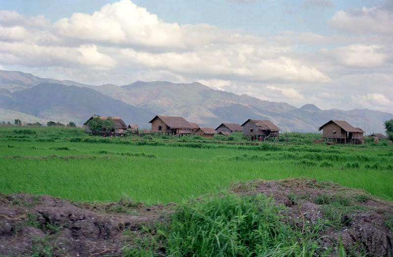 Myanmar Inle Lake 130