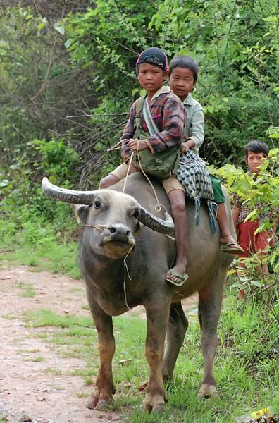 Myanmar Kelaw Region 241