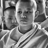 Serene Young Burmese Nun