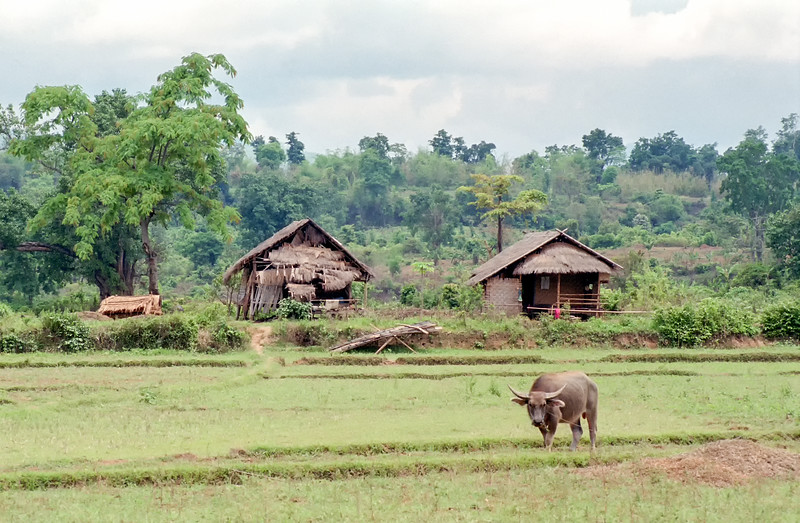 Myanmar Hsipaw 093