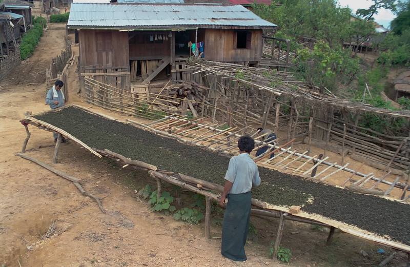 Myanmar Kelaw Region 261