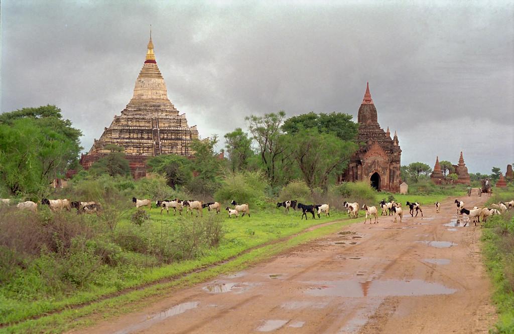 Myanmar Bagan 023