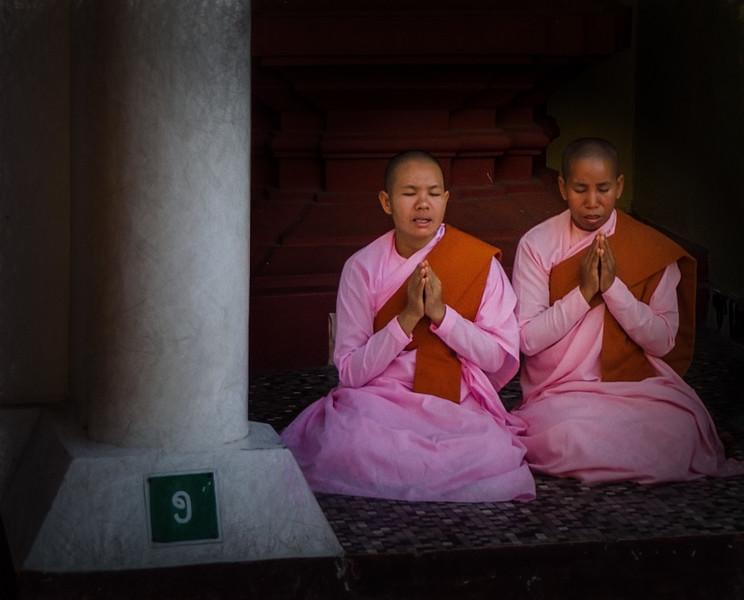 Pink Nuns Praying