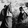 Korean Monks in Burma